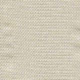 Tempotest Michelangelo 50964-13 Indoor/Outdoor Upholstery Fabric