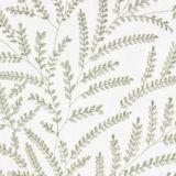 Stout Savannah Birch 1 Rainbow Library Collection Multipurpose Fabric