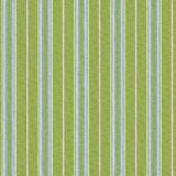 Tempotest Home Presidio Kiwi 5414-16 Fifty Four Collection Upholstery Fabric