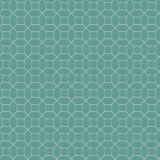 Stout Nilan Turquoise 1 Rainbow Library Collection Drapery Fabric