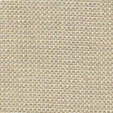 Tempotest Michelangelo 50964-22 Indoor/Outdoor Upholstery Fabric