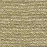 Stout Popjoy Twig 1 Comfortable Living Collection Indoor Upholstery Fabric
