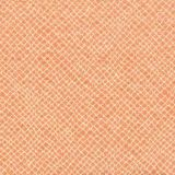 Stout Milkyway Apricot 1 Comfortable Living Collection Indoor Upholstery Fabric