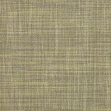 Sunbrella Augustine Moss 5928-0034 Sling Upholstery Fabric