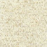 Stout Rivoli Desert 2 Natural Palette Collection Indoor Upholstery Fabric