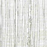 Stout Katydid Graphite 1 Color My Window Collection Multipurpose Fabric