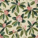 Scalamandre Rhododendron - Outdoor Reds and Greens on Cream 1 Upholstery Fabric